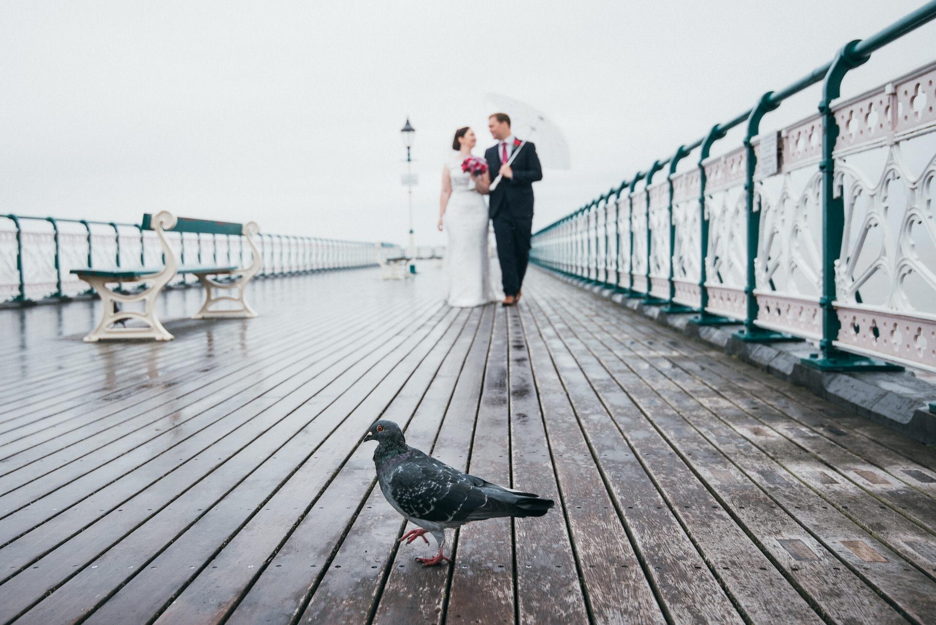 Best somerset wedding photographer 050