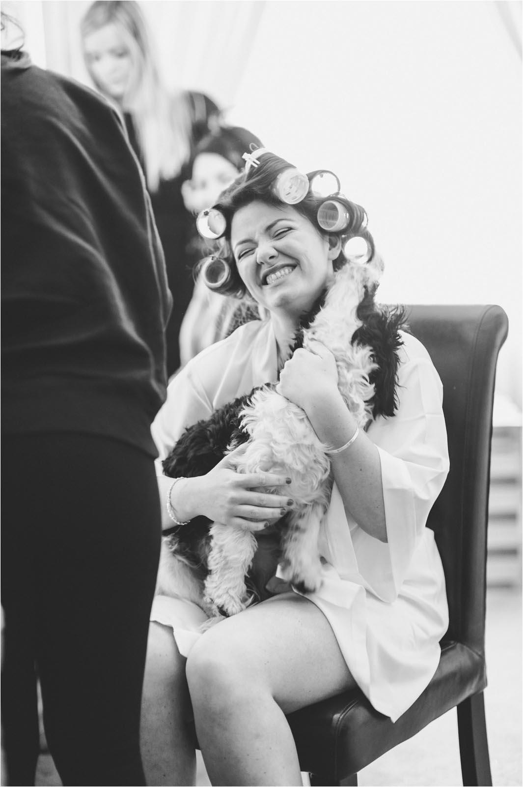 Dog licking bride