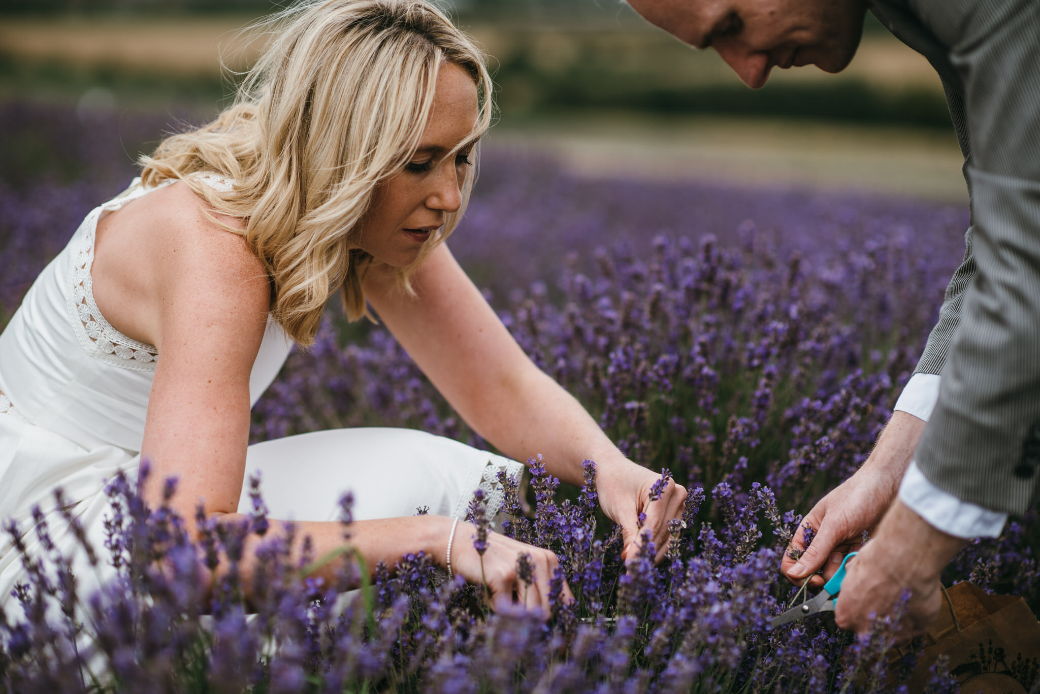 Engagement couple shoot hitchin lavender 11