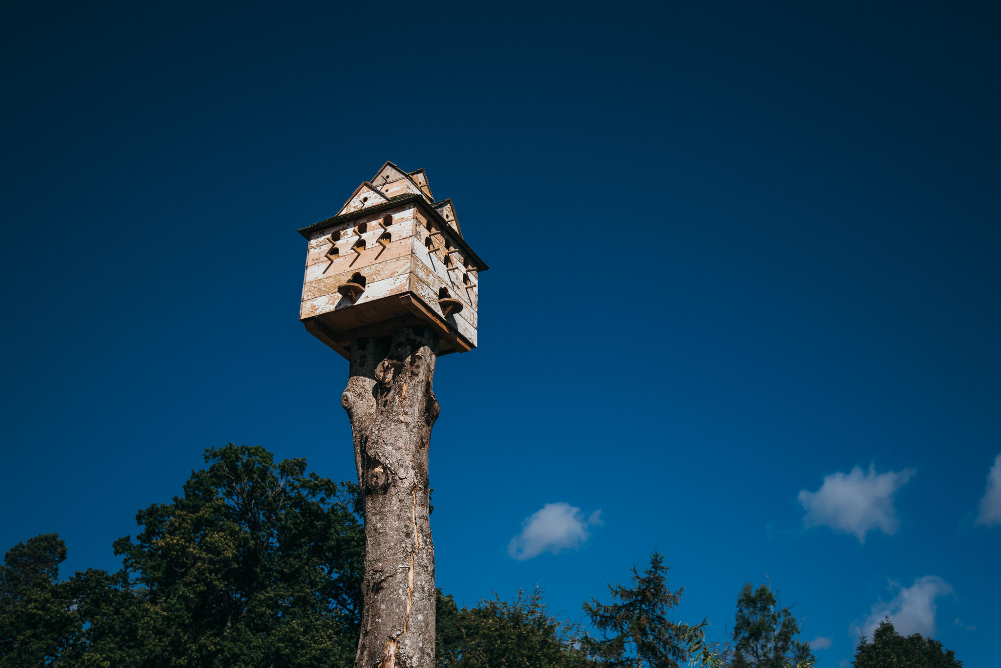 Dovecote at maunsel house